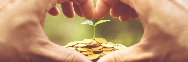 el-amor-y-las-inversiones