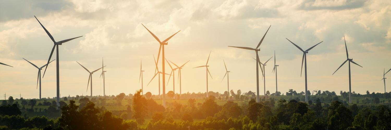 Inversiones verdes y sustentables