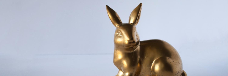 invertir_conejo